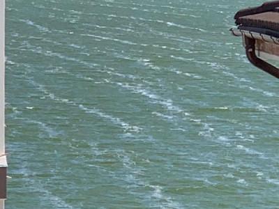 Vile Ovidiu-  vila pe malul lacului